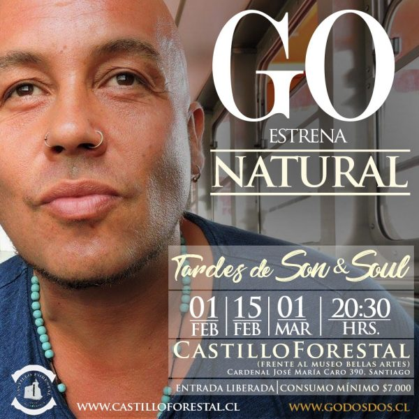 GO <br> Castillo Forestal <br> 2018