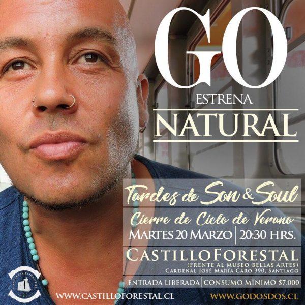 GO <br> Castillo Forestal <br> Marzo <br> 2018